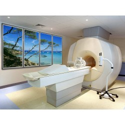 Relax & View® Wall and Ceiling